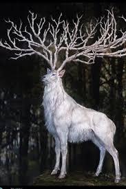 princess mononoke white stag
