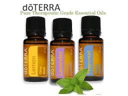 Get the magic healing of HIGH VIBRATION Plant Medicine