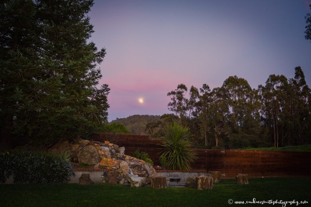 LWS Back Yard Full Moon