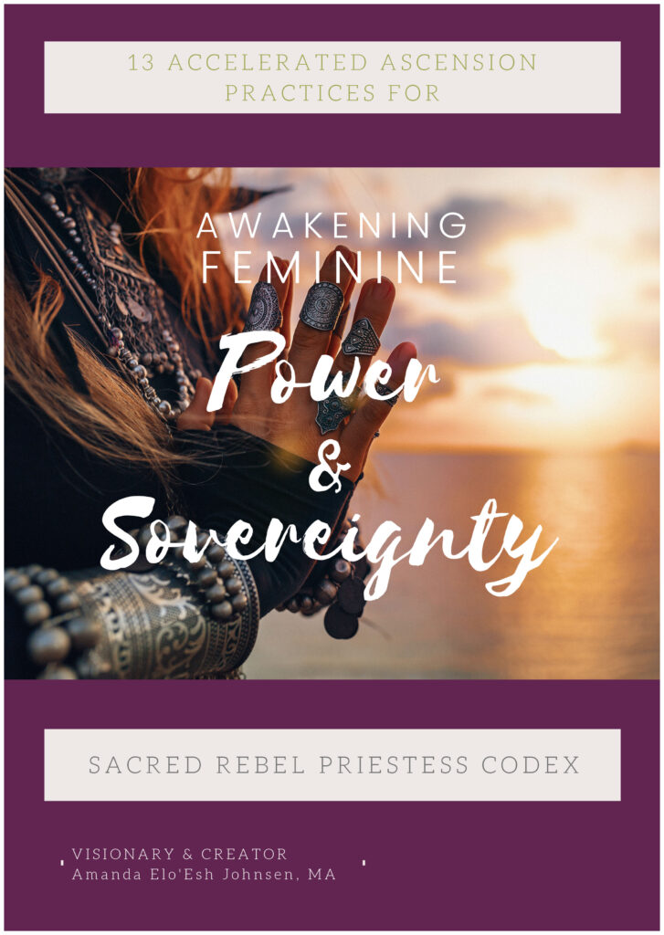Priestess Codex cover