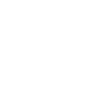 White Flower of Life Merkaba