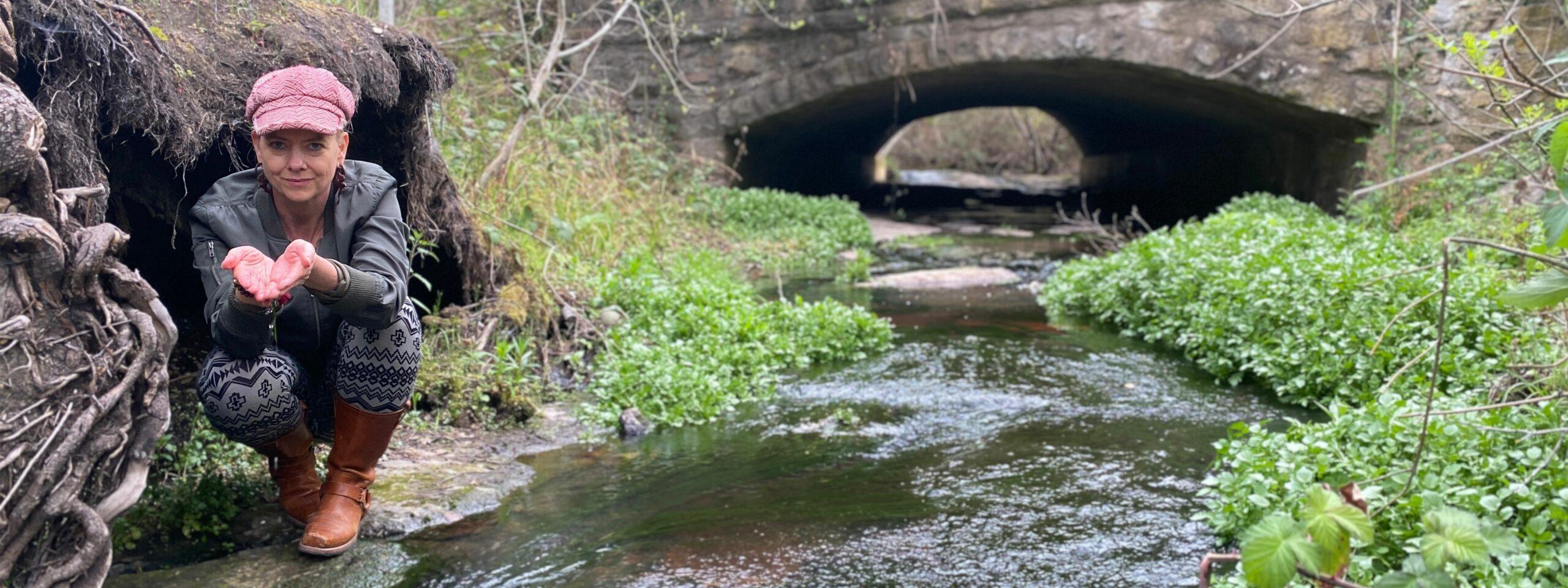 Amanda creek banner spring 2021